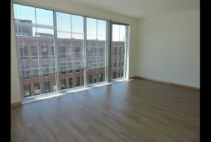 Trio Apartments - Large Windows
